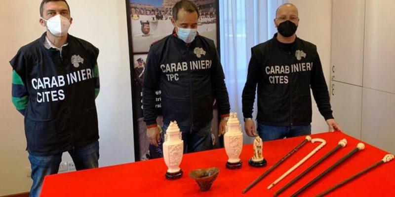 Sequestri carabinieri avorio